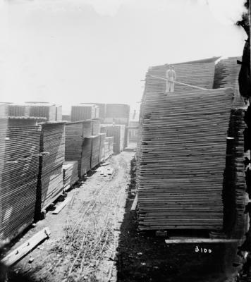Photographie en noir et blanc d'une cour à bois. Un homme est debout sur une pile de bois qui fait quatre fois sa taille.