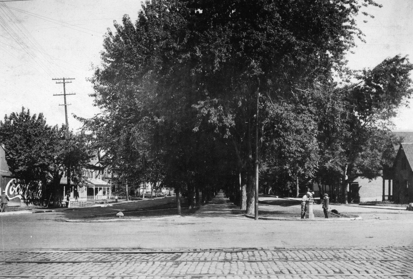 Photographie en noir et blanc d'un boulevard à deux voies, séparé par une travée de grands ormes. Des maisons bordent la rue. Deux jeunes boivent à une fontaine.